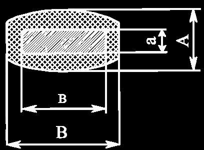 xthn 1_vectorized